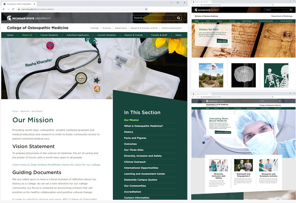 College of Osteo medicine website collage