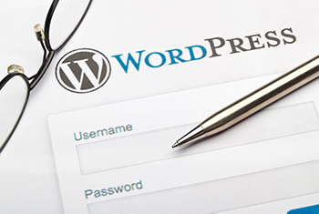 WordPress is one of the most popular CMS's people choose when it comes to web security.