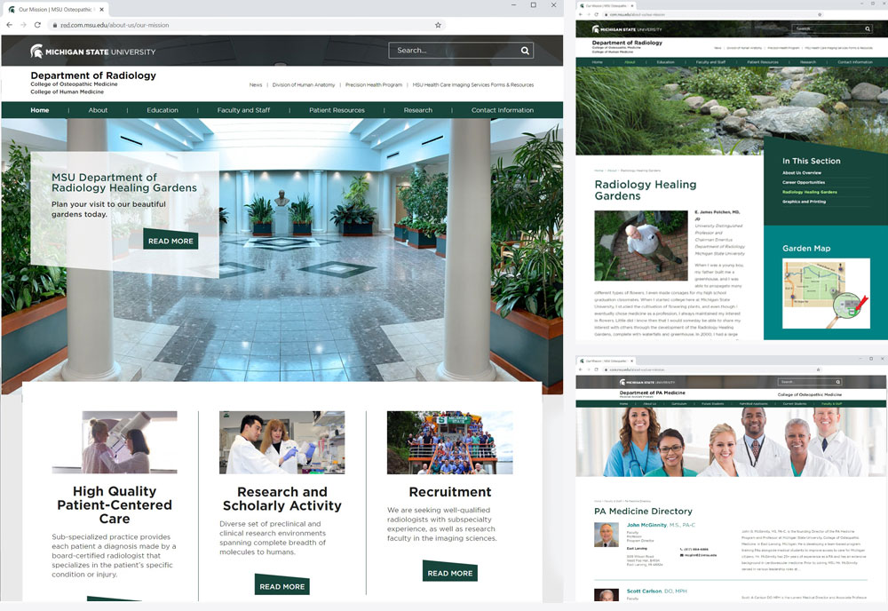 msu osteopathic medicine  collage of websites